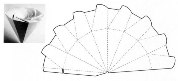 The carton structure design8